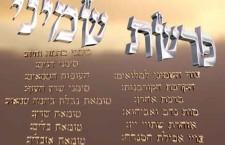 פרשת שמיני מאת הרב דוד סתו