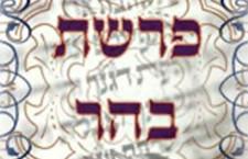 העזרה החשובה מכולן: פרשת בהר מאת הרב דוד סתיו