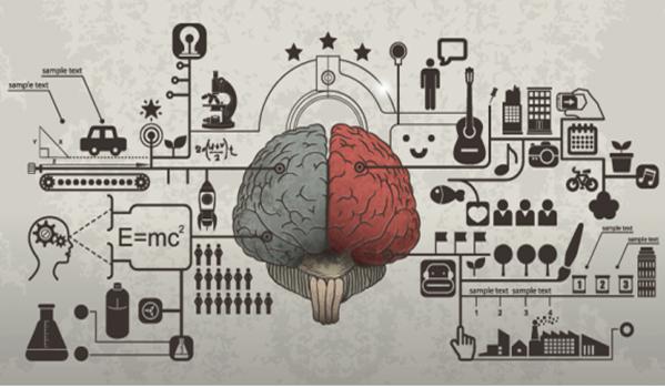 Corelet, הכירו את שפת תכנות המבוססת על המוח האנושי/ חן אידן