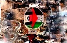 היהודים מבינים רק כוח/בן כספית