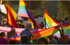 ממשלת ישראל בעד זוגות חד מיניים/מזל מועלם