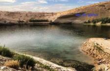 אגם מסתורי הופיע באמצע מדבר בתוניסיה/ קים וילשר, גרדיאן