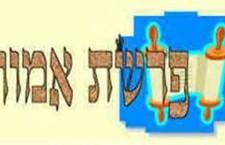 דבקות תמימה בדרך מאת הרב דוד סתיו
